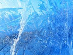 frozen chord