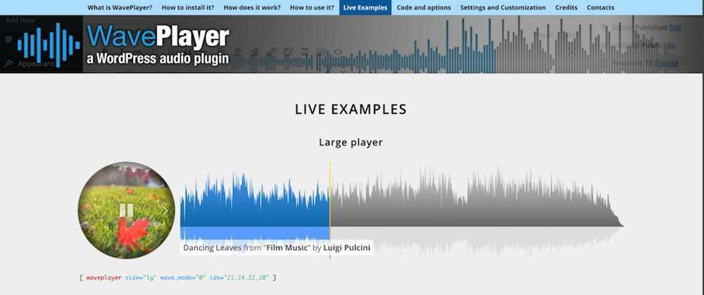 Best Media Music Player For WordPress WavePlayer WordPress Audio Player
