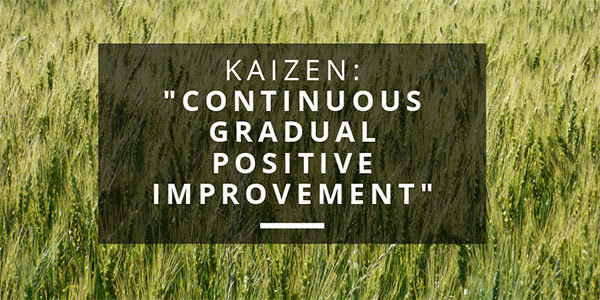 Kaizen-Motivational-Quotes-Musician-Productivity1