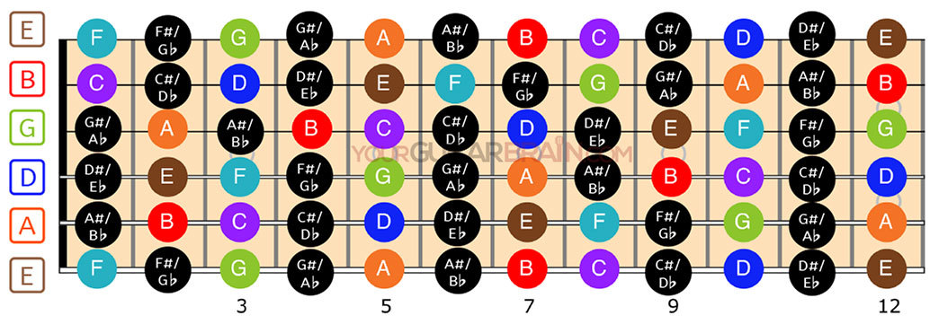 Guitar fretboard diagram notes chart for beginners how to learn the acoustic fretboard