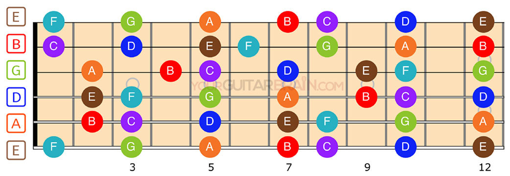 Guitar fretboard diagram Natural notes chart for beginners how to learn the acoustic fretboard